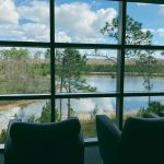 Two comfortable chairs in the library overlooking the pond below.